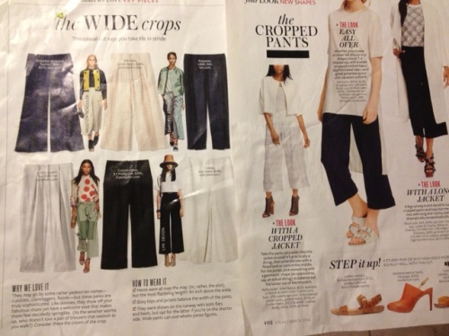 Wide Leg Cropped Pants. Did you see that one of these pairs is about $3000!